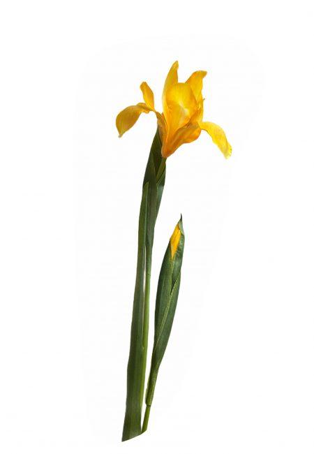 Kunstbloem Iris